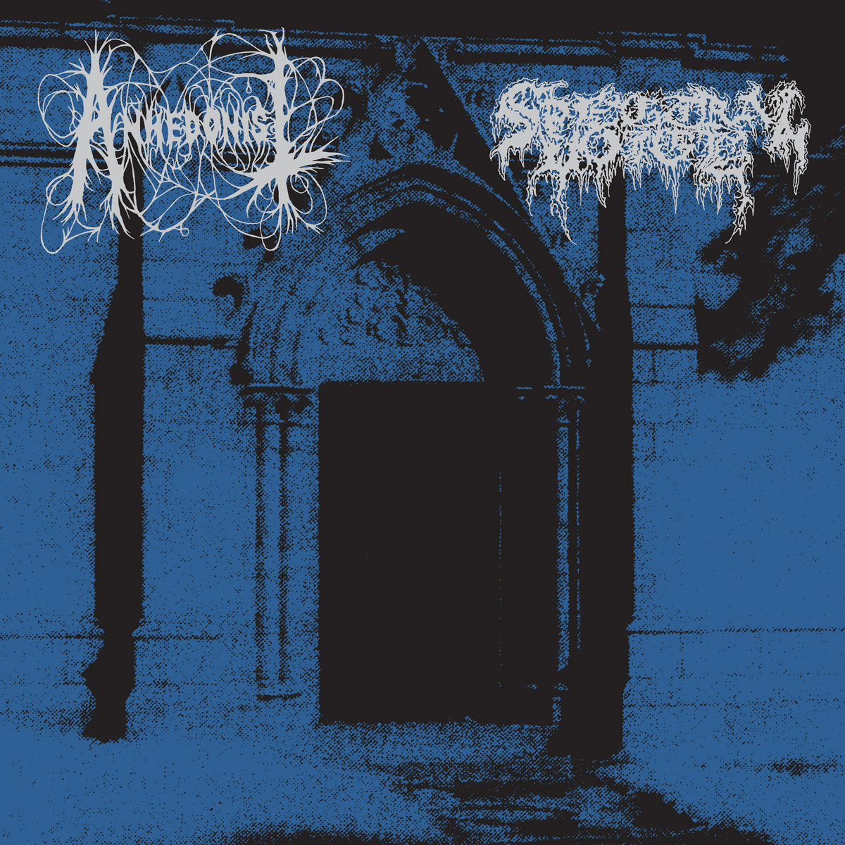 anhedonist spectral voice